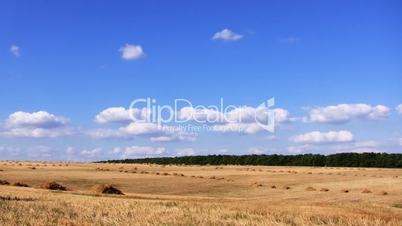 field and blue sky. time lapse HD