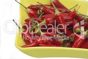 Rote Chilis in Schälchen