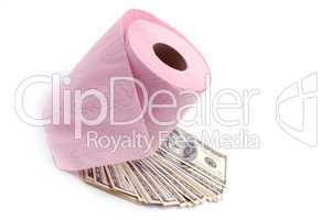 Still-life toilet paper with dollars
