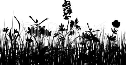 schwarz-weiss Hintergrund