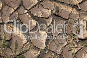 Environmental Climate Change Concept Photo of Dry Cracked Earth