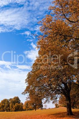 Herbsterwachen 2