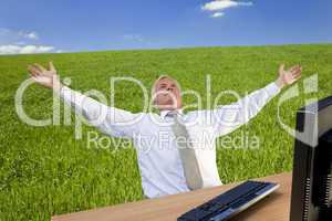 Successful Businessman In A Green Field
