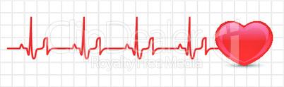 Vector heart cardiogram