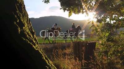 Reiter hoch zu Roß am Waldrand