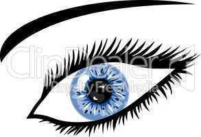 Blaugraues Auge mit Wimpern