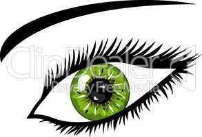 Grünes Auge mit Wimpern