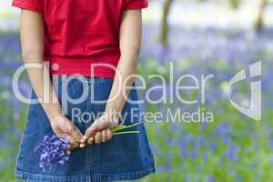 Little Girl With A Bunch of Bluebells