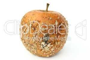 Verschimmelter Apfel