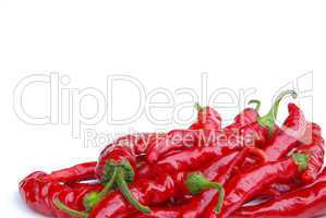 Peperoni - chile pepper 10