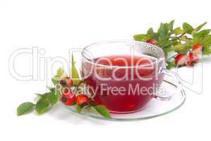 Tee Hagebutte - rose hip tea 06