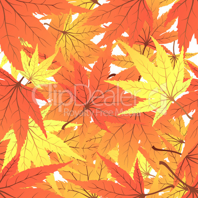 Seamless pattern of maples leaves