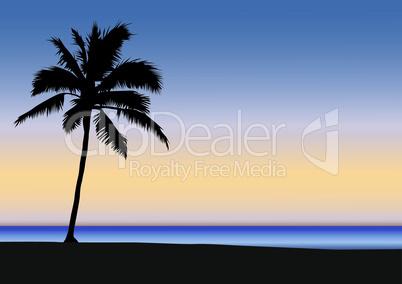 Palmen Strand