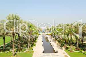 Palm trees area of luxurious hotel , Dubai, UAE