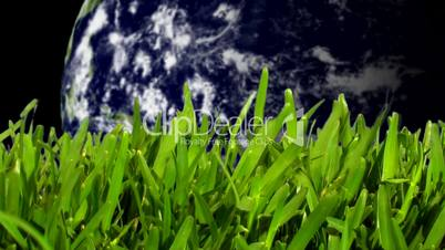 Grass with earth spinning