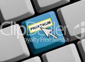 Praktikum online