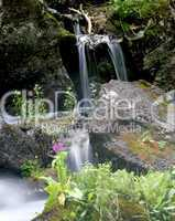 Small Stream Waterfall
