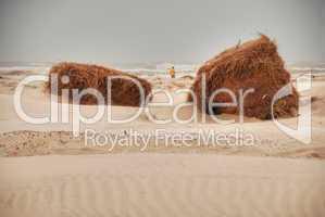 Southa Padre Island Beach, Texas