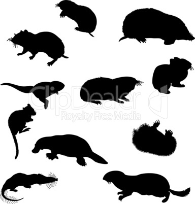 beavers silhouettes set