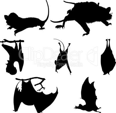 bats silhouettes set