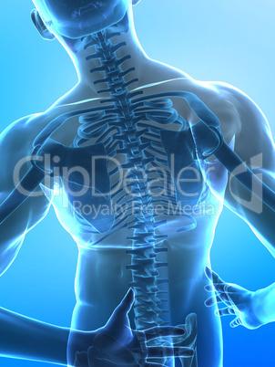 Spine pain concept