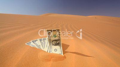 Geldscheine liegen auf Wüstensand