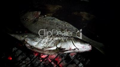 Cooking fish on the barbecue/grill