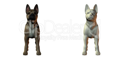 German shepherd puppy isolated on white background: Royalty