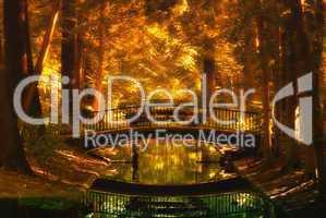 Herbstwald in Gold mit Brücke und einem Fluss