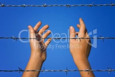 Hände hinter Stacheldraht