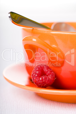 pudding with raspberries