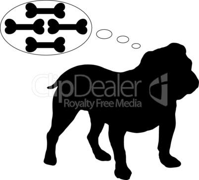 Englische Bulldogge träumt von vielen Knochen
