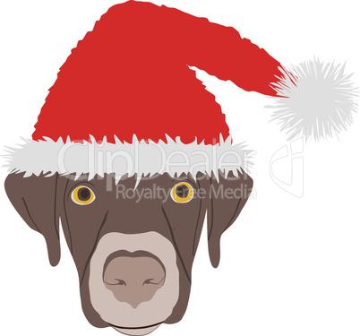 Lachender Hundekopf mit Nikolausmütze