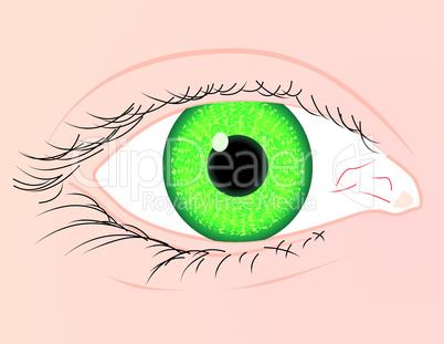 Green eye white skin