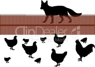 Fuchs möchte Hühnchen als Abendessen