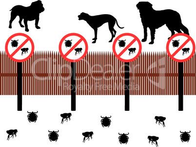 Hunde hinter Zaun zum Schutz gegen Zecken und Flöhe