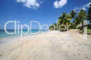 Karibischer Strand mit Spuren im Sand