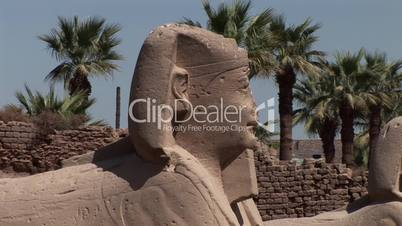 Sphinx, Luxor Tempel, Ägypten