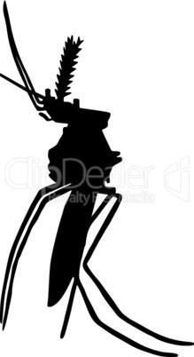 Die schwarze Silhouette einer Stechmücke