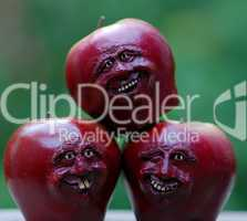 Great Carved Apples