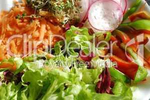 Salatteller 01