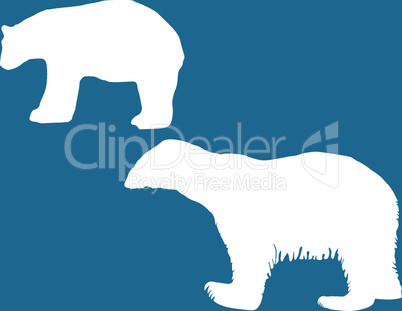 Zwei Eisbären