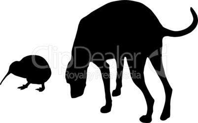 Hund und Kiwi