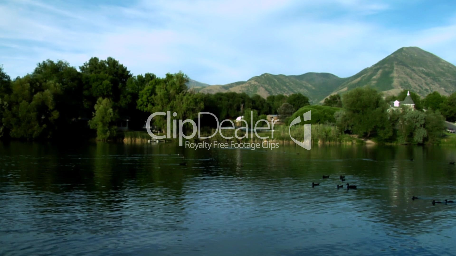Pond royalty free video and stock footage for Pond dealers