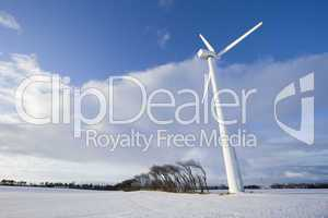 Wind turbine and windy trees