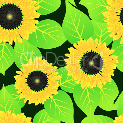 Abstract sunflowers flowers background