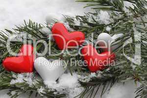 Herzen auf verschneiten Tannenzweigen