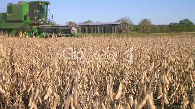 Combine Harvesting Soybeans 03