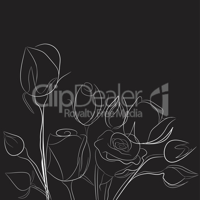 Black background with white roses
