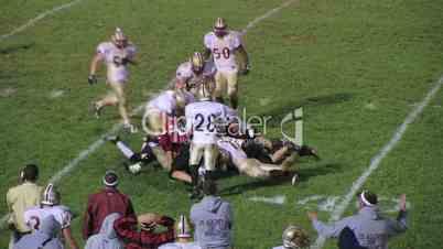 Football Quarterback Fumble